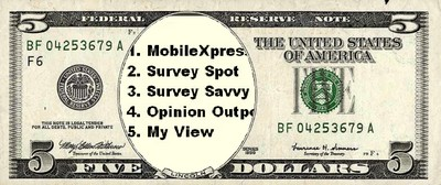 5 Cash Paying Surveys