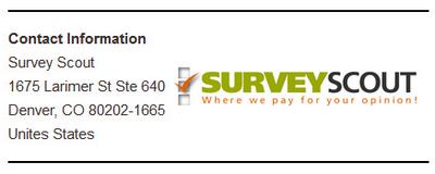 Company Info SurveyScout